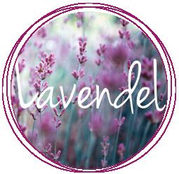 Lavendel_rund